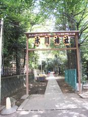 10日11日は渋谷氷川神社例大祭