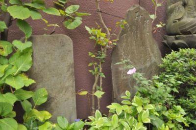 恵比寿の名所シリーズ 台雲寺の敵味方の慰霊碑