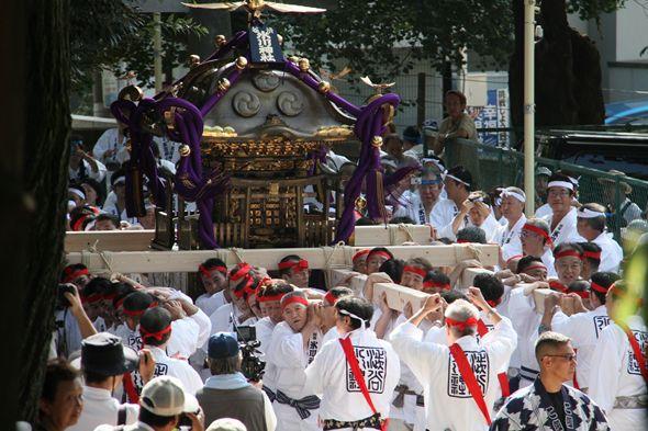 2013年9月に担がれた渋谷氷川神社の宮神輿