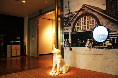 白根記念渋谷区郷土博物館・文学館のハチ公展がヤバイ!