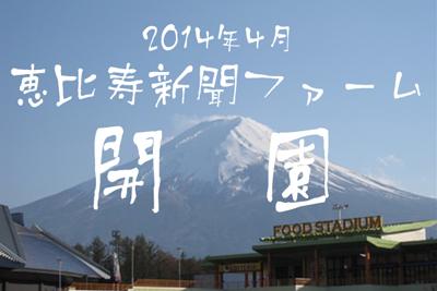 2014年4月念願の農園プロジェクト「恵比寿新聞ファーム」が開園!