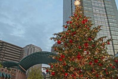恵比寿の冬の始まり!ガーデンプレイスとウェスティンホテル東京で点灯式が開催されます