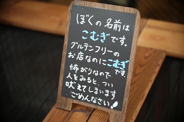 yamanohitsuzi026