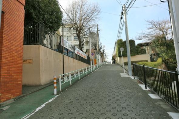 yamanohitsuzi030