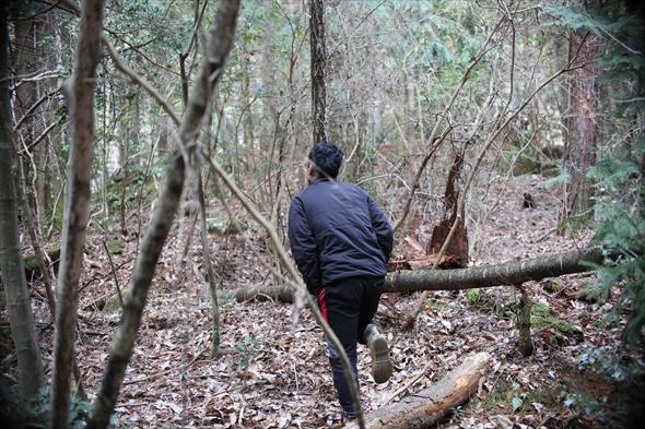 森を歩く石渡氏。恵比寿新聞この後遭難しそうになる