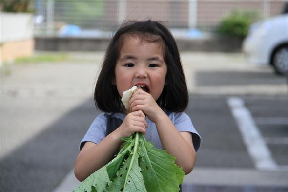 3歳になるころには自分で収穫して丸かじり