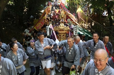 渋谷氷川神社例大祭2018。「わかば会」に密着してわかった「楽しい」の神髄