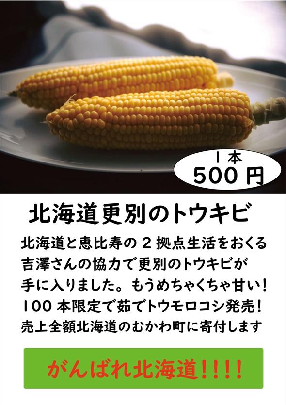 fukkoukcurry002