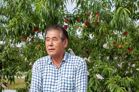 特別栽培のさくらんぼをつくる森谷さん